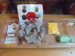 Loisir Créatif - Kit Bonsaï Mimosa En Perles - Perles Box - Perles