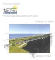 LA REUNION LE TAMPON - OUVERTURE ET INAUGURATION ROUTE DES TAMARINS ( PONTS ) 2009 - PAP ENTIER POSTAL  PETREL DE BARAU - Puentes