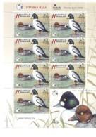 2016. Belarus, Bird Of The Year, Common Goldeneye, Sheetlet, Mint/** - Belarus