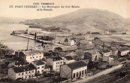 CPA PORT VENDRES - LA MONTAGNE DU FORT BEARN ET LE BASSIN - Port Vendres