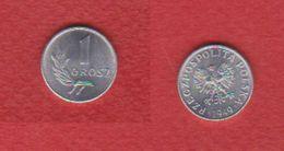 Pologne / KM 39 / 1 Grosz  1949  / UNC - Pologne