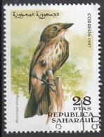 Saharaui 1997 Birds Uccelli : Pigliamosche Comune -  Muscicapa Striata - Nuovo CTO - Sparrows