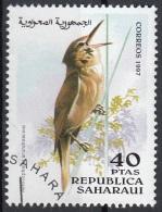 Saharaui 1997 Birds Uccelli : Cannareccione - Acrocephalus Arundinaceus - Nuovo CTO - Sparrows