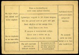 II. Világháború 1943. Tábori Posta Lap, Cenzúrázva - Hongrie