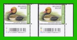 BUZIN - Nette Rousse - PL 1+2 - 1985-.. Oiseaux (Buzin)