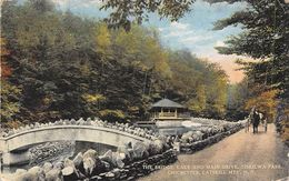 US - The Bridge - Lake And Main Drive - Tiskilwa Park - Chichester - Catskill Mts Mountains - Etats-Unis