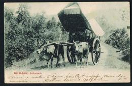 SINGAPORE - SINGAPOUR-  Bullockart  -  Voyagée Bateau 1905- Recto Verso - Paypal Free - Singapour