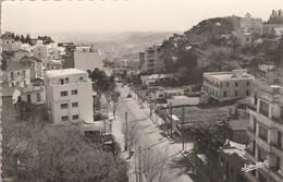 Algérie : ALGER  :  EL - BIAK : Boulevard - Alger