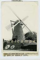 MEERLE - Hoogstraten (Antw.) - Molen/moulin - Echte Foto 9x13 Cm Van De Heimolen In 1978 (voor De Restauratie) - Orte