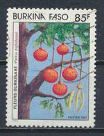 °°° BURKINA FASO - Y&T N°733 - 1987 °°° - Burkina Faso (1984-...)