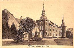 Seny - Château De Mr Fabri (Edit. F. Pire) - Tinlot