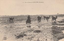 29     GOULVEN        Sur La Grève De GOULVEN      Plan PAS COURANT - Brignogan-Plage