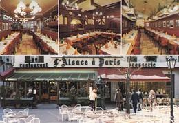 L'ALSACE A PARIS. L'AMBIANCE DE SA BRASSERIE. LE CALME DE SON RESTAURANT-FRANCE-TBE-BLEUP - Hotel's & Restaurants