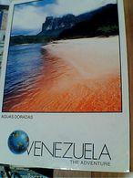 VENEZUELA ISLA  ISOLA ORCHIDEA  ORQUIDEA  VB1999  GN21061 - Venezuela
