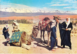 LEBANON : VINTAGE COLOUR PICTURE POST CARD : TOURISM : GENERAL VIEW OF BAALBEECK & CAMEL DRIVERS - Lebanon