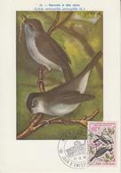 Carte  Maximum  1er  Jour   MONACO    Fauvette  à  Tête  Noire   1962 - Sperlingsvögel & Singvögel