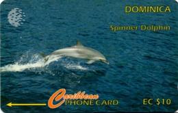 *DOMINICA: 9CDMD* - Scheda Usata - Dominica