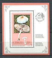 216 CISKEI 1988 - Yvert BF 3 - Champignon - Neuf ** (MNH) Sans Charniere - Ciskei