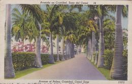 Postcard Avenue Of Palms Cristobal Canal Zone Panama PU 1947 My Ref  B11830 - Panama