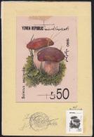 Yemen Republic (1991) Boletus Aestivalis. Original Artwork,  Watercolor On Posterboard (17.5 X 26 Cm) With Acetate Overl - Mushrooms