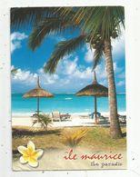 Cp , Ile MAURICE , MAURITIUS , île Paradis , Plage à BELLE-MARE , Photo S. Peter, Ed. Agedis , Voyagée - Mauritius