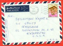 Algeria 1990.Mushrooms. Avia. Envelope Passed The Mail. - Algeria (1962-...)