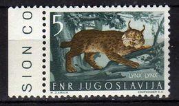 Yugoslavia 1954 Local Fauna.- Animals Mammals ( Lynx Lynx ) MNH - 1945-1992 Socialist Federal Republic Of Yugoslavia