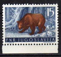 Yugoslavia 1954 Local Fauna.- Animals Mammals ( Bears ) MNH - 1945-1992 République Fédérative Populaire De Yougoslavie