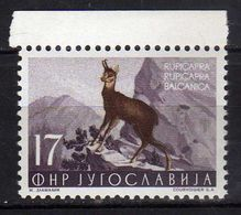 Yugoslavia 1954 Local Fauna.- Animals Mammals Rupicapra  Goat Antelope  Chamois ( Rupicapra Rupicapra ) MNH - Unused Stamps