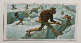 Beau Chromo CHOCOLAT SCHAAL (voir 2 Scans) - Glacier Alpiniste Gletscherflöhe  -    /E263 - Chocolat