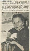 OLIVIA DE HAVILLAD RITAGLIO DI GIORNALE 1952 - Vecchi Documenti