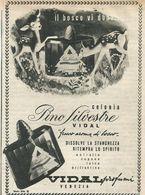 PINO SILVESTRE VIDAL VENEZIA PROFUMI RITAGLIO DI GIORNALE 1952 - Vecchi Documenti