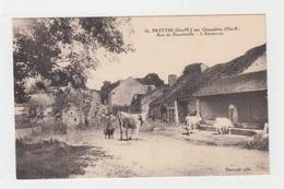 52 - FRETTES / RUE DE BOUCHENILLE - L'ABREUVOIR - Francia