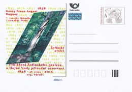 """Tchéquie / Cartes Post. (Pre2013/35) Annonce """"Réserve Naturelle De La Forêt Primaire De Zofinsky"""" (1) 1838-2013, 175 Ans - Umweltschutz Und Klima"""