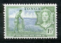 Toga - Tonga 1953 - Michel Nr. 101 * - Tonga (...-1970)
