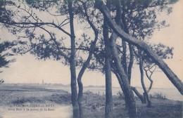 Carte 1920 LES MOUTIERS EN RETZ   / SOUS BOIS A LA POINTE DE LA BAIE - Les Moutiers-en-Retz