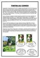 BELGIQUE 3043 + CONGO 1523 FDC 1er Jour Encart A4 1er Jour TINTIN KUIFJE HERGE émission Commune 2001 - Comics
