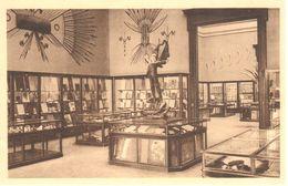 Bruxelles - CPA - Tervuren - Musée Du Congo Belge - Salle Des Bois - Tervuren