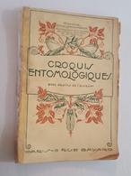 Croquis Entomologiques Par Le Chanoine Ch. De Labonnefon (La Rochelle), Notices Sur Henri Fabre, Dessins De L'auteur - Nature