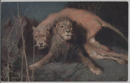 Les Lions Leones Lioni Löwen Effet De Nuit In Der Nacht - Tade Styka - Lions