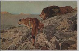 Wüstenräuber Na Pousti Les Pirates Du Desert Lion Löwe - R. Friese No. 3288 - Lions