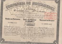 COMPAGNIE DE MOSSAMEDES (BRESIL) TITRE DE UNE ACTION- 1901 - Actions & Titres