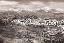 Teramo - REAL PHOTO (12,0 X 18,0 Cm) - Panorama - Italia - Teramo