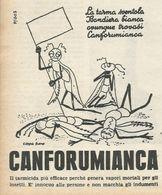 CANFORUMIANCA  RITAGLIO DI GIORNALE 1952 - Vecchi Documenti