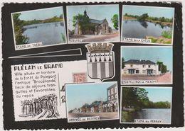 22   Plelan Le Grand  Vues - Andere Gemeenten