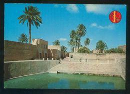 Marruecos. Tiznit. *La Source Bleue* Nueva. - Marruecos