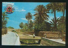 Marruecos. Tiznit. *La Palmeraie* Circulada 1987. - Marruecos