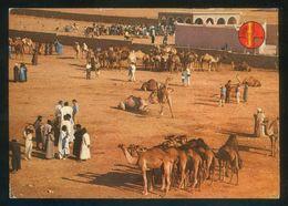 Marruecos. Goulimine. *Marché Des Chameaux* Circulada 1971 + Air Mail Label. - Marruecos