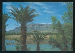 Marruecos. Vallée Du Drâa - Route De Ouarzazate à Zagora* Ed. Createc. Nueva. - Marruecos