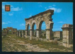 Marruecos. Volubilis. *Ruinas Del Foro* Ed. Fisa-Komaroc Nº 5. Nueva. - Marruecos